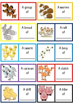 Nouns in Agriculture (BUNDLE)