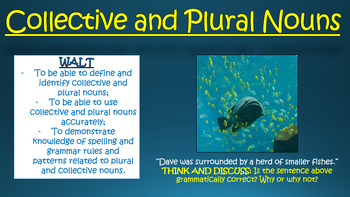 Collective and Plural Nouns!