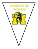 College Pennant Research Activity AVID with 34 Bonus Print