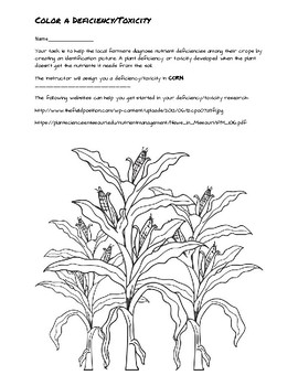 Color A Plant Deficiency/Toxicity Activity