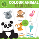 Color Animal Flash Cards
