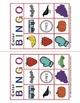 Color Recognition Bingo