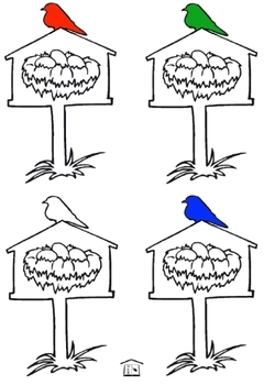 Color Birds activity set