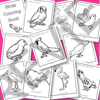 Birds Coloring Printables