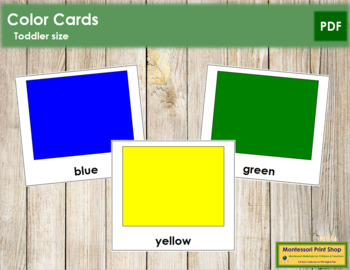 Color Cards - Toddler