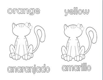 Color Cat! ¡Gata de Color!
