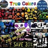 Color Clip Art Bundle 298 Photo & Artistic Digital Stickers