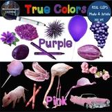 Color Clip Art Pink & Purple Photo & Artistic Digital Stickers