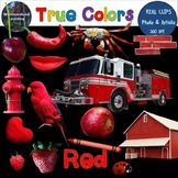 Color Clip Art Red True Colors Photo & Artistic Digital Stickers