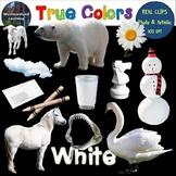 Color Clip Art White True Colors Photo & Artistic Digital Stickers