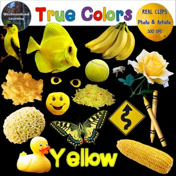 Color Clip Art Yellow True Colors Photo & Artistic Digital Stickers