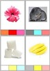 Color Clip Cards
