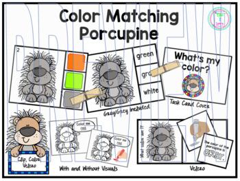 Color Clip Cards: Porcupine