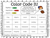 Color Code It! Animal Classifications FREEBIE