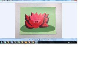 Color Composition Project Bundle