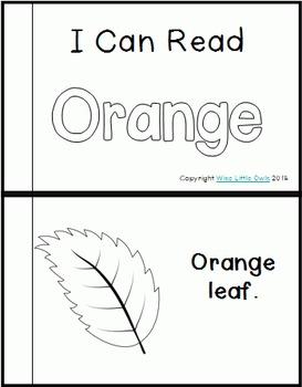 Color Connections: Orange