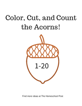 Color, Cut, and Count the Acorns 1-20