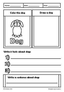 Color Draw and Learn Pets Doodle Notes Activity Pages