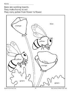 Color/Learn: Bees