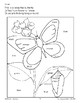 Color/Learn: Butterfly