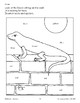 Color/Learn: Lizard