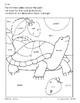 Color/Learn: Tortoise