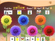 Color Match the Flowers - Animated Step-by-Step Game - PCS