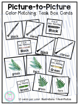 Color Matching:  Picture-to-Picture Task Box Cards (Illustrations & Photos)