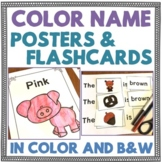 Color Name Posters and Flashcards