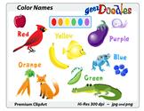 Color Names Activity