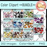 Color Objects *Bundle* Clipart