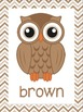 Color Posters: Owls