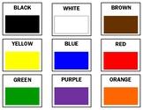 Large Color PECs
