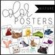 Color Posters - BUNDLE