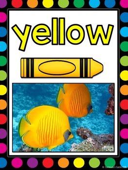 Color Posters {Rainbow Dots & Animal Theme}
