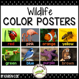 Color Posters: Wildlife