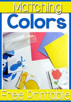 Color Recognition Busy Bag Activity: Preschool, Sped and S