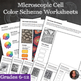 Color Scheme Worksheets - STEAM: Art and Science Microscop