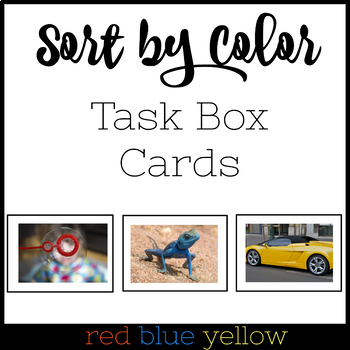 Color Sorting Task Box Cards Blue Red & Yellow