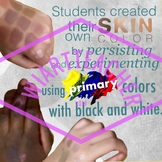 Color Theory for Skin Color poster pack