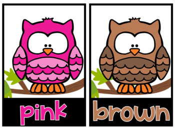 Color Word OWLS Posters and Printables by Nicole Jenkins ...
