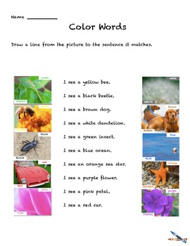 Color Words Activities preK-1   Colors Worksheets Learn color with ipad book!