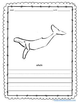Color & Write The Ocean / Sea (sea turtle, shark, octopus, whale, crawfish)