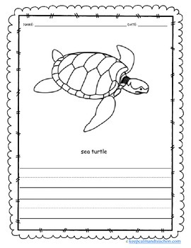 Color & Write The Ocean / Sea (sea turtle, shark, octopus, whale, crawfish)