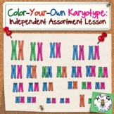 Color Your Own Karyotype: Independent Assortment Lesson for High School Biology