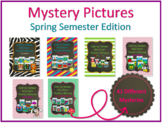 Color by Number 100 Chart Mystery Pictures: Spring Semeste