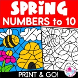 Color by Number Spring Set