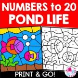 Color by Number Spring Summer Pond Life Set