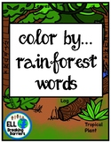 Color by... Rainforest Words