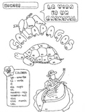 Color by conjugation AR-verb conjugation Spanish Galapagos